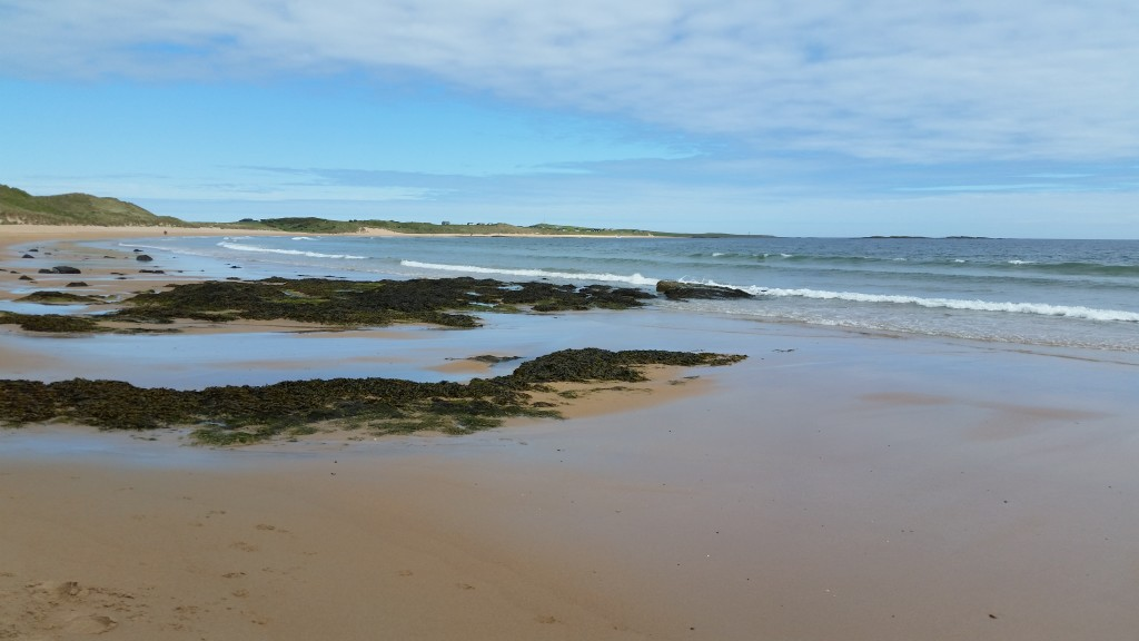 Looking North across Embleton Bay